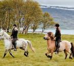 スキャルダルヴィークのフィヨルドで乗馬の経験に合う馬に乗る
