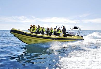 Black Beach RIB Boat Trip