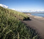 Iceland's South Coast beaches have a stark contrast between the verdant inland and black coastal sands in summer.