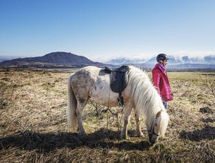 Horseback Riding in the Lava Fields