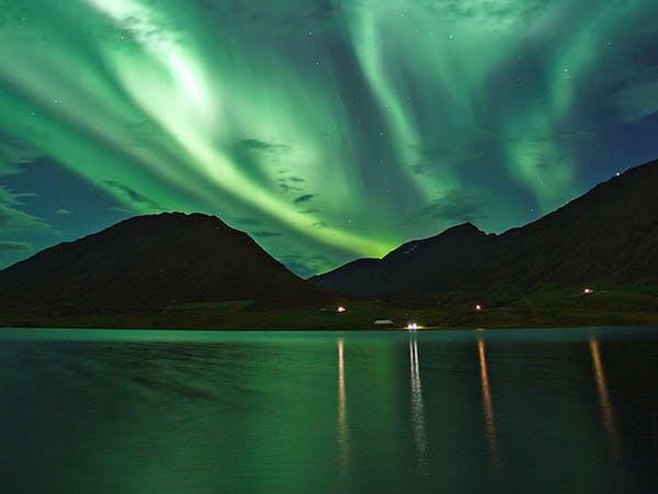 Ambassador Whale Watching / Whale Watching Akureyri