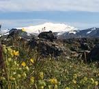 Snæfellsjokull glacier is an omnipresent feature on the peninsula.