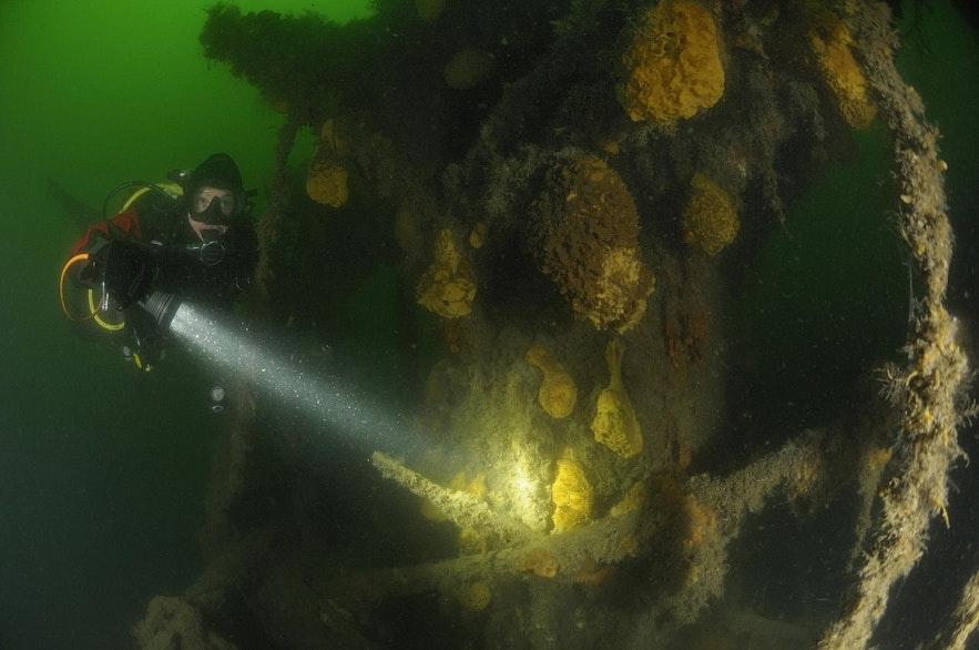 在冰岛的峡湾潜水看沉船