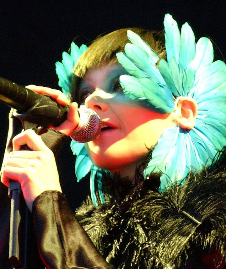 Profil de l'artiste | Björk