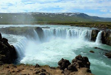 Day Tour from Cruise Ships in North Iceland | Akureyri or Husavik