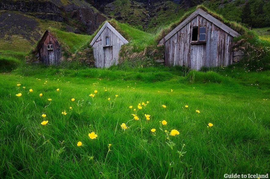 冰島傳統住宿
