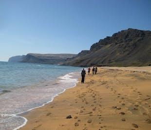 Rauðasandur Beach | Walking Tour in the Westfjords