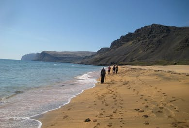 Rauðasandur Beach | Walking Tour in the Westfjords