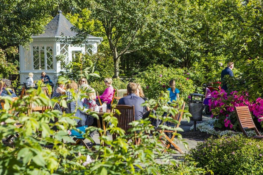 Sekretny ogród w Reykjaviku w słoneczny dzień.