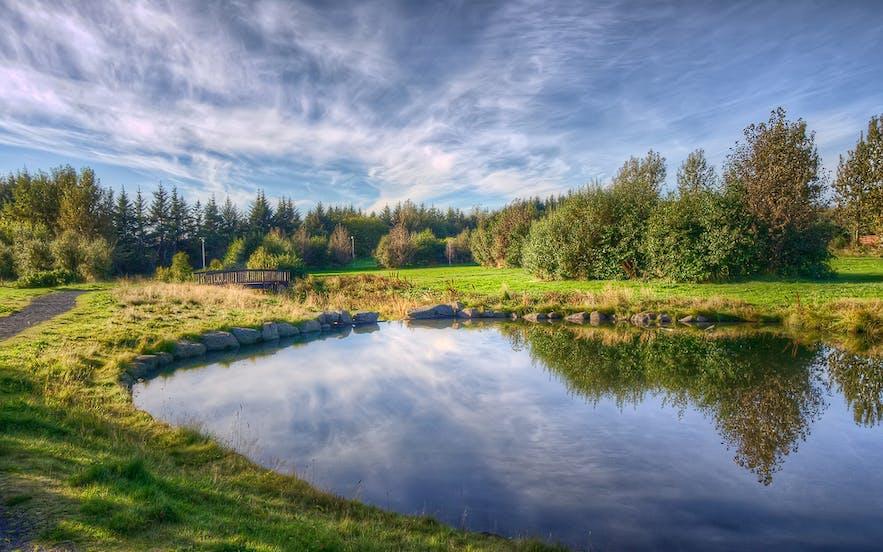 สวน Fossvogsdalur ที่เมืองเรคยาวิก