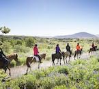 Im Sommer ist ein Ausritt in Island eine wahre Freude für Pferd und Reiter.