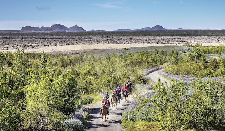 骑马旅行团 - 火山熔岩地貌|与呆萌冰岛马近距离接触| 冰岛特色体验