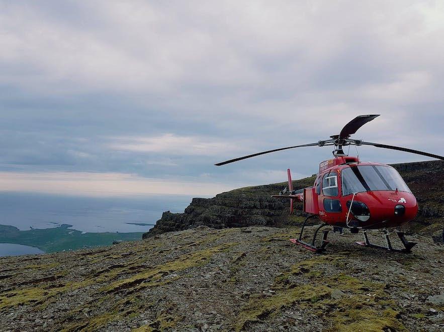 Scenic Helicopter Tour for Chickens