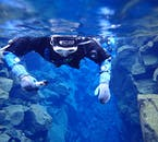 Into the Blue | Silfra Snorkelling Tour from Reykjavik