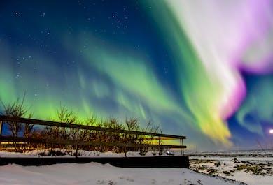Happy Northern Lights Tour from Reykjavík