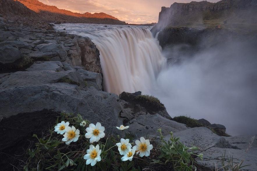 Водопад Деттифосс находится недалеко от озера Миватн