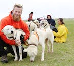 Play with the huskies and dogs before and after your dog sledding tour.