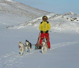 アークレイリ発|犬ぞり体験付きの3泊4日パッケージツアー