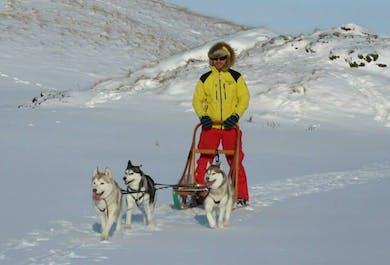 Voyage de 4 jours dans le Nord de l'Islande incluant du traîneau à chien