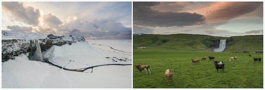 冰岛南岸两大著名瀑布:塞里雅兰瀑布+斯科加瀑布