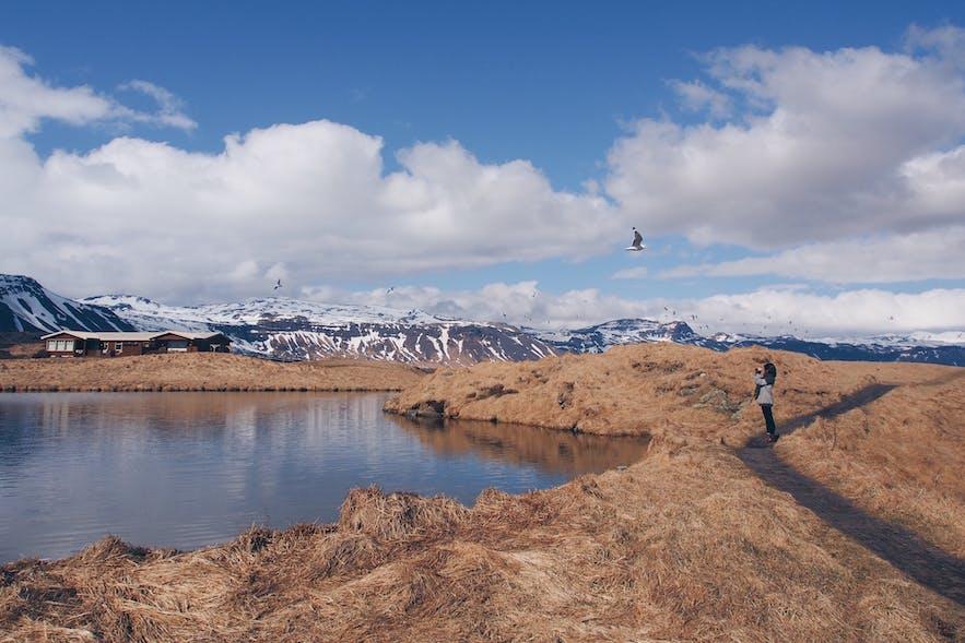 冰岛斯奈山半岛渔港小镇阿尔纳斯塔皮-Arnarstapi