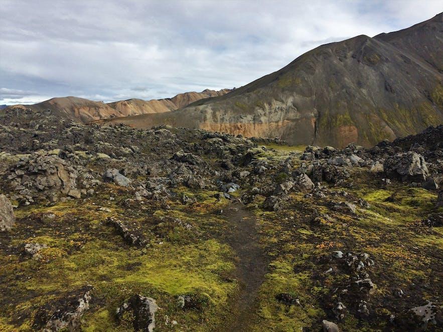 Bunte Natur in Fjallabak