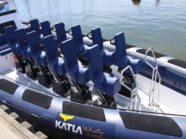 Katla Whale Watching