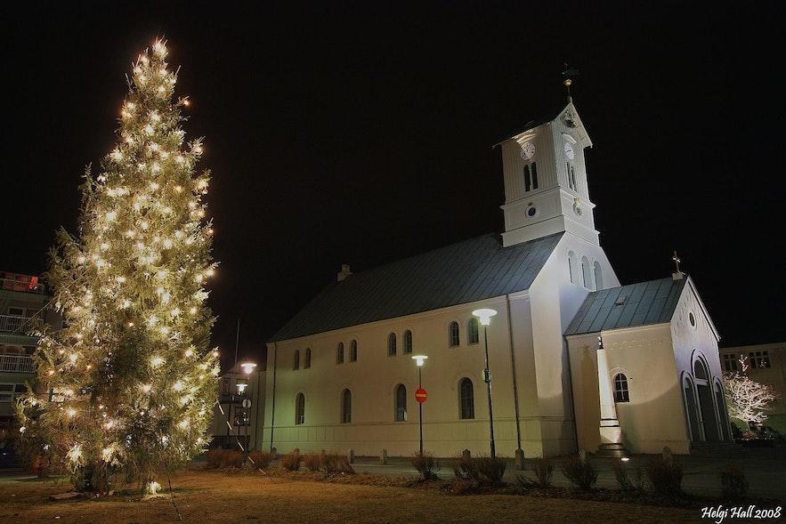 Oslo-juletræet i Reykjavík. Foto fra Wikimedia, Creative Commons, foto af Helgi Halldórsson