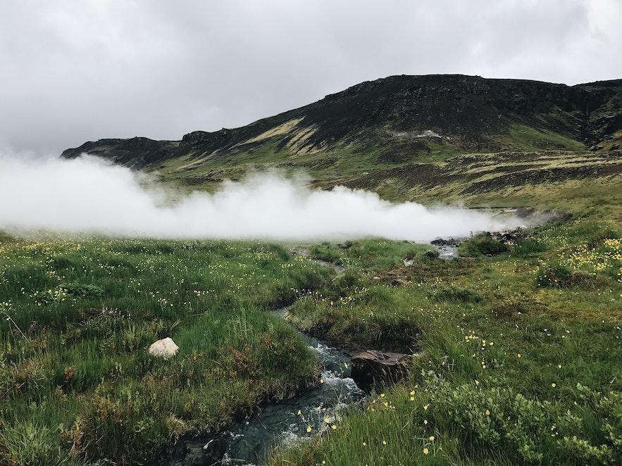 冰島Hveragerði 溫泉鎮