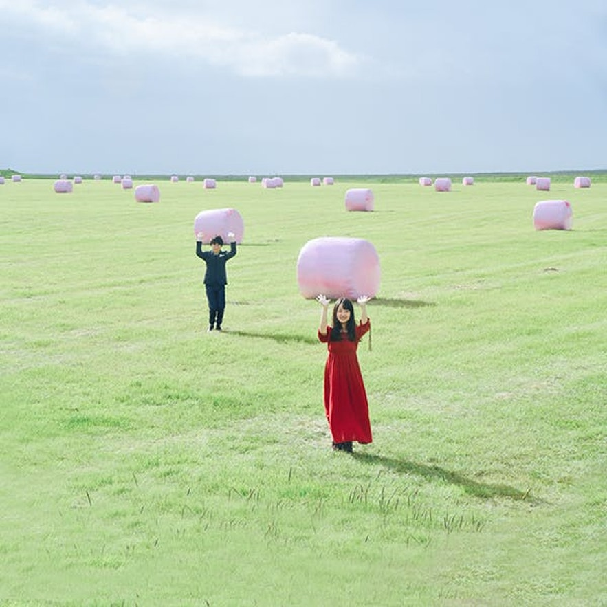 冰島牧場棉花糖