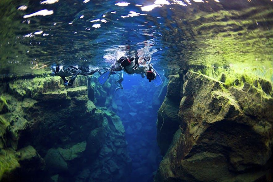 十二月的冰岛浮潜