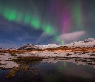 Island rundt med Snæfellsnes-halvøen | 10-dages vinterpakke