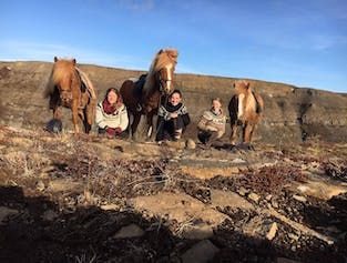 2-Day Horse Riding Tour   Geysers, Waterfalls & the Golden Circle