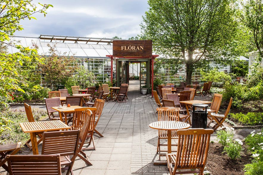 Set in a greenhouse beside the Reykjavik Botanic Gardens, Floran is one of the most aesthetically pleasing spots in the city.
