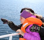 On whale watching tours, life jackets are available for all who want them.