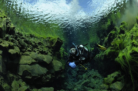 Photo from Diving Silfra and Golden Circle Tour