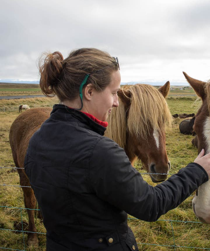 Katelyn patting horses