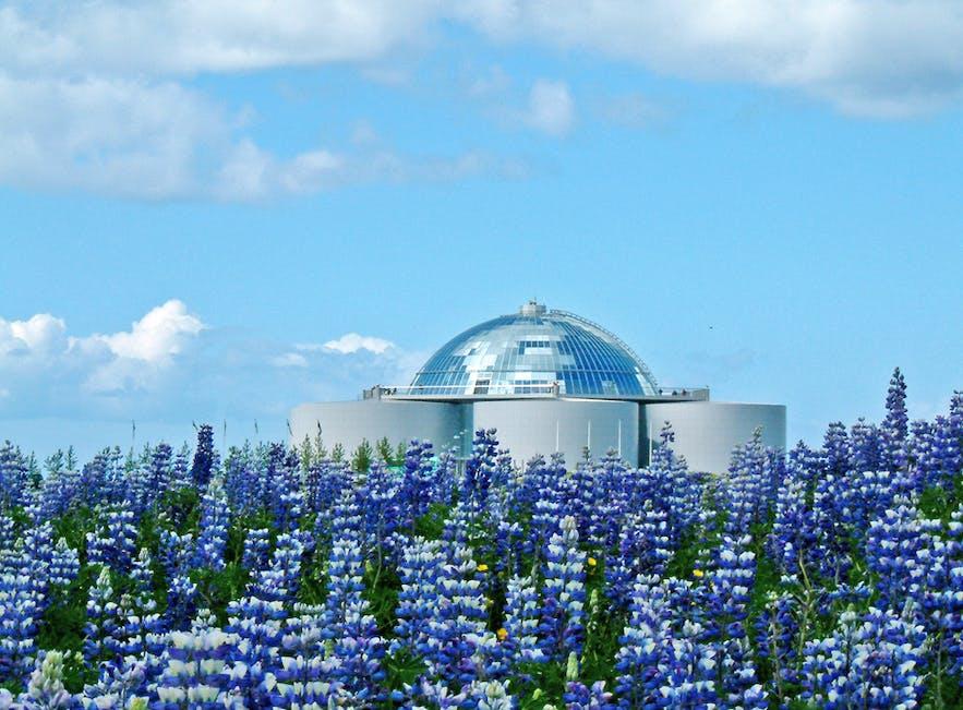 Perlan, oder die Perle, in Reykjavík beherbergt eine Gletscherausstellung