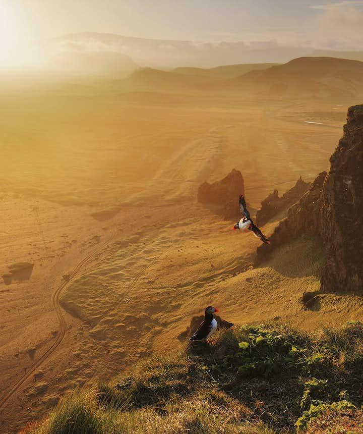 7月的冰岛|穿衣、气候、旅行攻略及新冠肺炎疫情出行注意事项