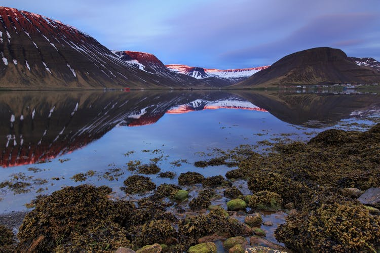 Travelling around the Westfjords, you will be amazed by the wealth of natural splendor on offer.