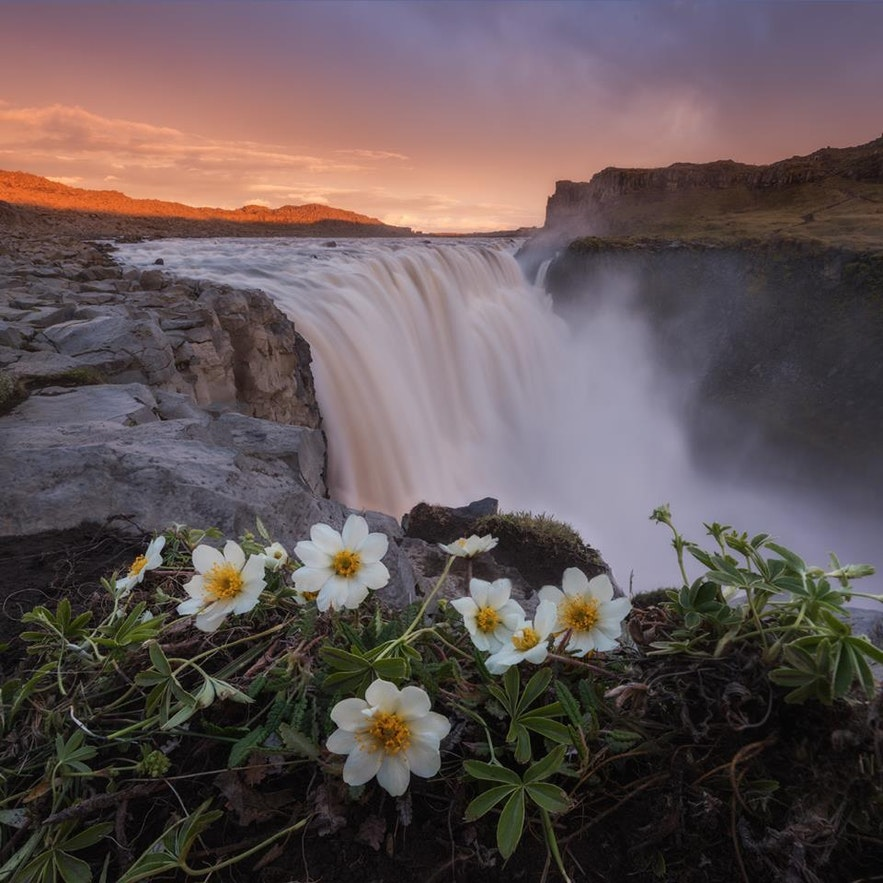 冰岛自驾跟团
