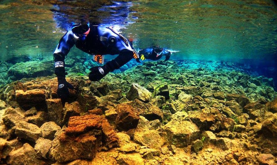 水中だと信じられないほど、シルフラでは100mの視界が体験できる
