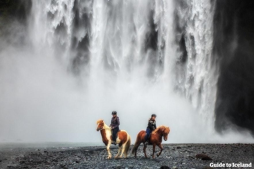 Jazda konno obok wodospadu na południu Islandii