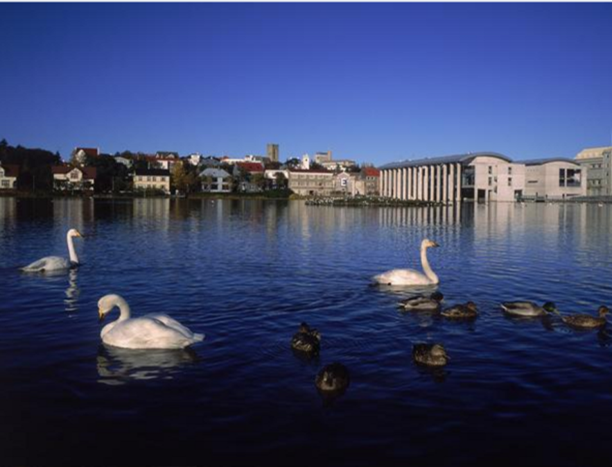 Tjornin pond in downtown Reykjavik, Iceland