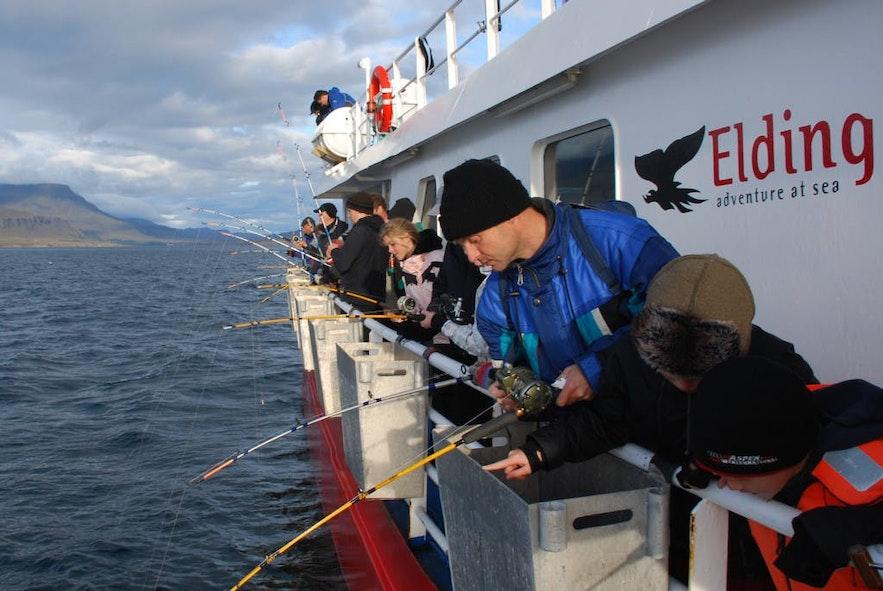 Łowienie ryb na Islandii