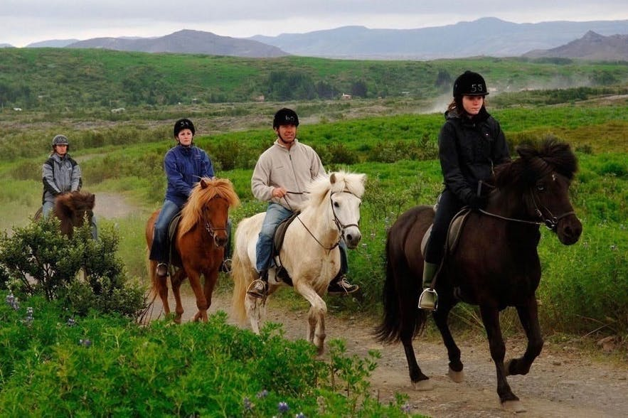 Camping on your own also allows you to maximise nearby tour opportunities, such as horse back riding.