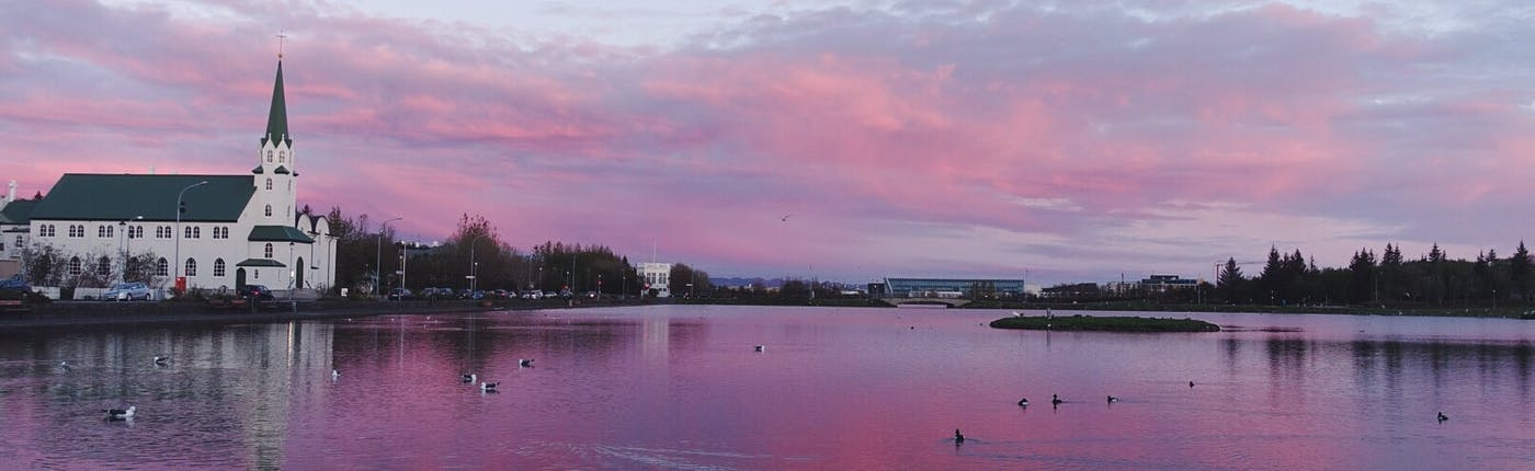 Tjörnin | The Pond in Reykjavik