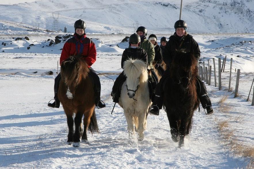Riding Icelandic horses through the snow
