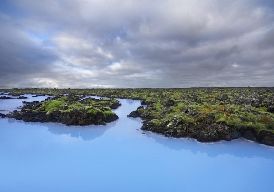 La mousse volcanique fait contraste avec les eaux bleues laiteuses du Blue Lagoon
