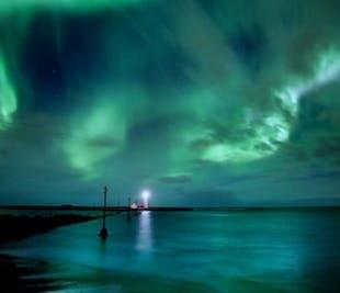 Obserwowanie wielorybów i zorza polarna | Dwa w jednym